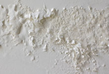 Riverside drywall mold removal